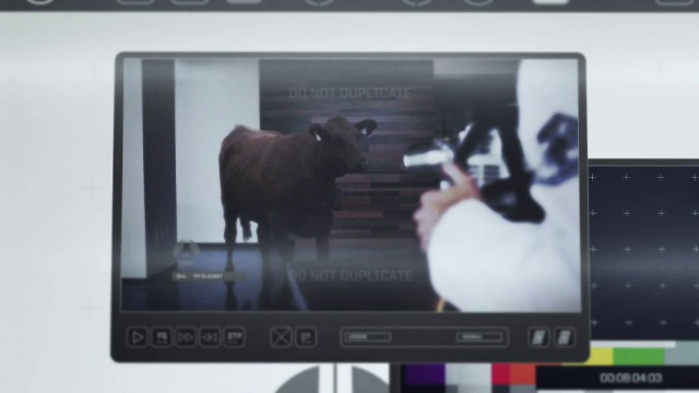 Red Giant TV Episode 91 – Tempo: Fresh Meat – Keying & Compositing the Cow